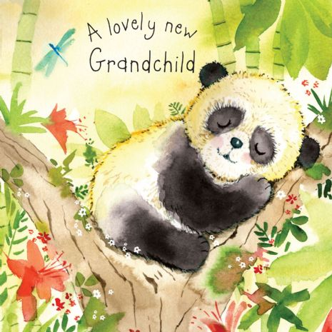New Grandchild Cards. New Granddaughter Cards. New Grandson Cards. Congratulations Cards. Twizler.